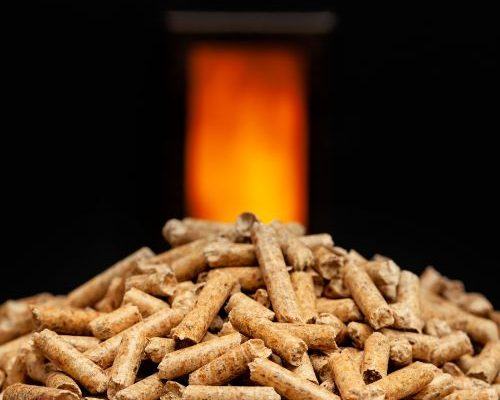 Pellet Burning Stove